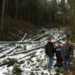 施主と伐採地見学