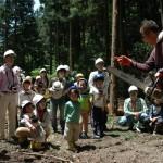 ワークショップ伐採見学2